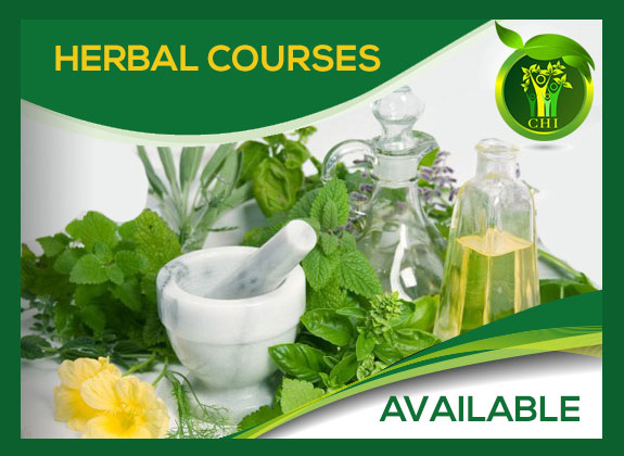 Herbal-courses-available-from-master-herbalist-Louise-Plant