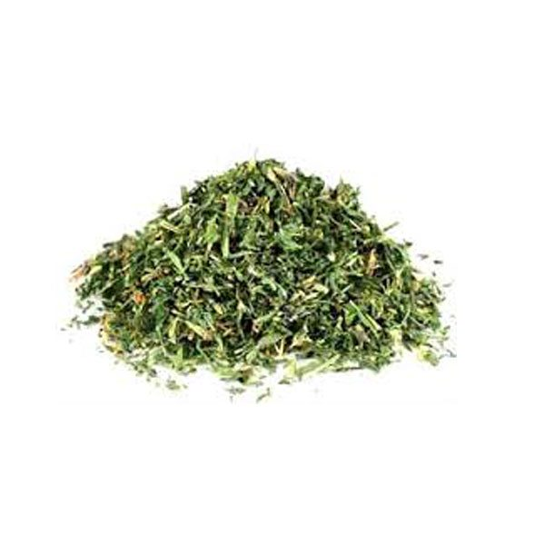 driedherbsonline Alfalfa or meditago sativum is one of the most nutritious herbs that we have.